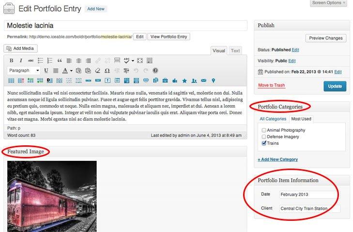 edit-portfolio-item
